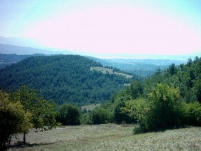 Oruçbey Köyü - Kadirli - Osmaniye